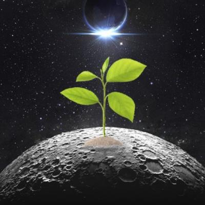 ¿Podemos cultivar plantas en el espacio exterior?