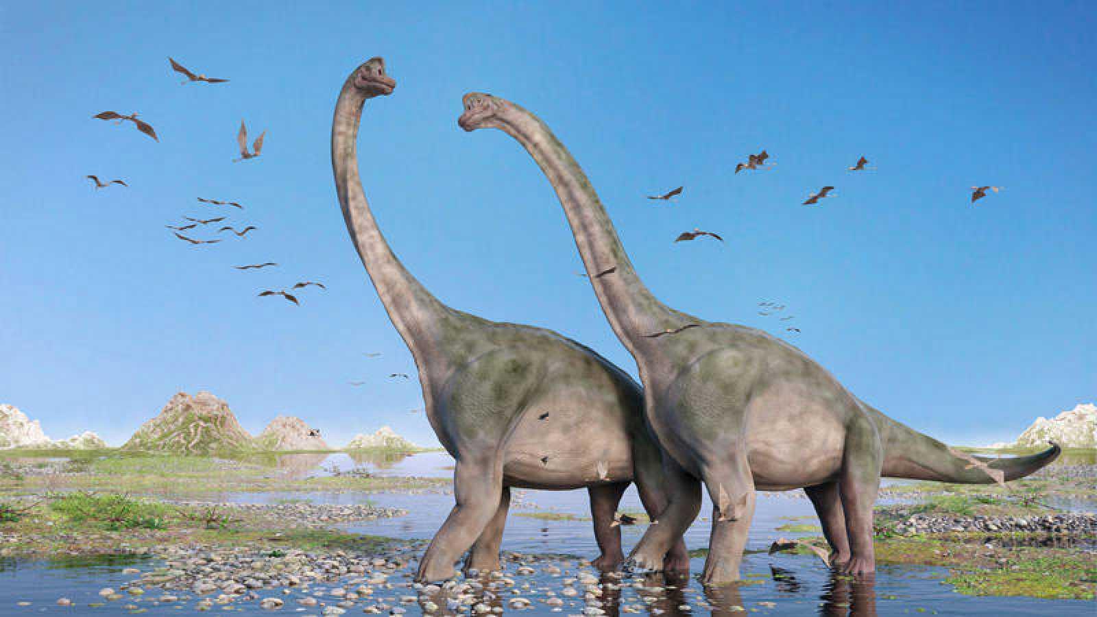 ¿Podrían los dinosaurios aún caminar por la Tierra?